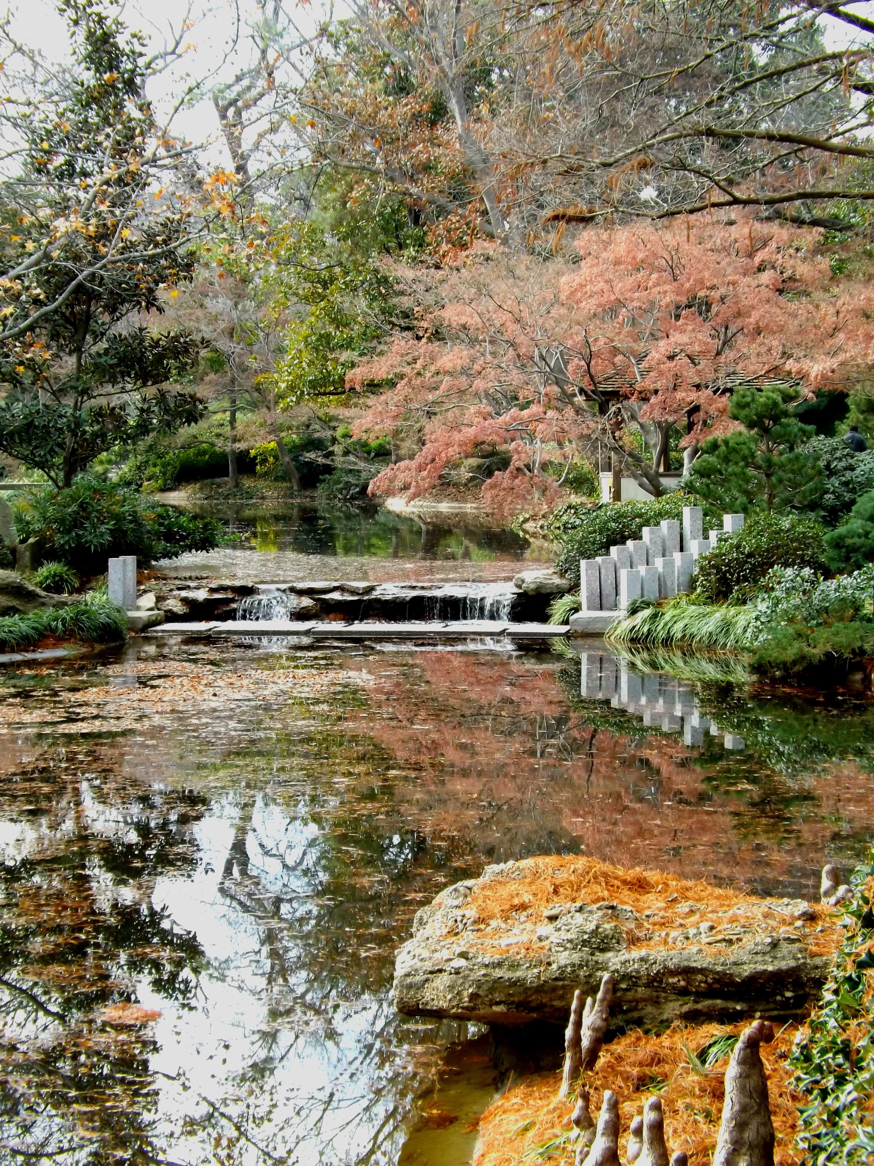 A Japanese garden in Texas? | Pete\'s Alaska